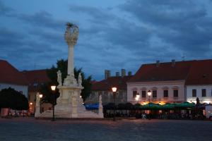 Guesthouse Maksimilian, Guest houses  Osijek - big - 58