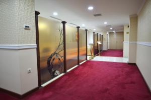 Hotel Gold, Hotely  Skopje - big - 63