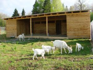 Kolhidskie Vorota Usadba, Farm stays  Mezmay - big - 119