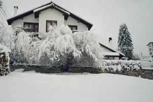 Villa Rigel Pamporovo