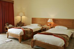 Double Room (all inclusive) The Three Corners Fayrouz Plaza Beach Resort