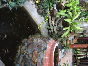 Baansanook Bungalows & Pool, Penziony – hostince  Ko Chang - big - 32