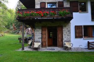 Chalet Svizzero Val Ferret - Apartment - Courmayeur