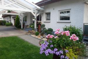 Villa Stumpf - Hofweier