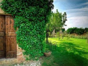 Castello Di Semivicoli (18 of 49)