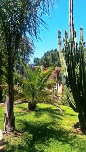 Hacienda Monte Sol, Ferienwohnungen  Somerset West - big - 35