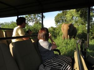 Honeyguide Tented Safari Camps, Luxusní stany  Rezervace Manyeleti - big - 14