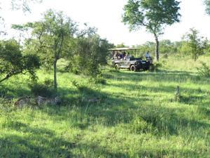 Honeyguide Tented Safari Camps, Luxusní stany  Rezervace Manyeleti - big - 13