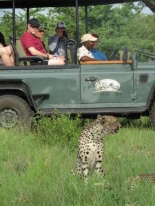 Honeyguide Tented Safari Camps, Luxusní stany  Rezervace Manyeleti - big - 18