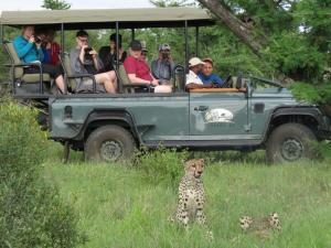 Honeyguide Tented Safari Camps, Luxusní stany  Rezervace Manyeleti - big - 16