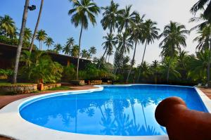 Auberges de jeunesse - Hotel Eva Lanka