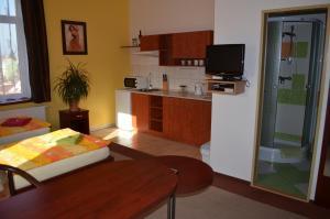 Residence Salvia, Apartmanok  Liberec - big - 4