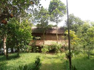 Albergues - Neptune Adventure - Tatai River Bungalows