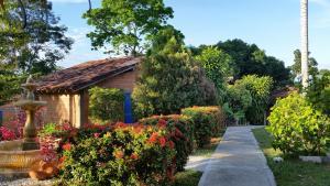 Hotel Parador del Gitano, Hotely  Doradal - big - 24
