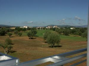 Montero IV by Golfinc - Sant Jordi