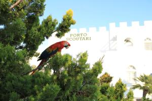 Porto Scoutari Romantic Hotel & Suites (27 of 117)