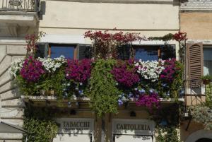 Appartamento Benincampi - abcRoma.com
