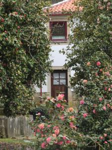 Quinta das Aveleiras, Vidéki vendégházak  Torre de Moncorvo - big - 10