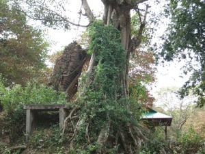 Isanborei Homestay 9, Ubytování v soukromí  Kâmpóng Chheutéal - big - 7