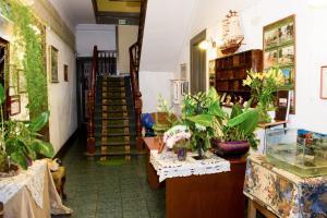 Hostal Residencia Blest Gana, Penziony – hostince  Viña del Mar - big - 58