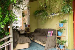 Hostal Residencia Blest Gana, Penziony – hostince  Viña del Mar - big - 59