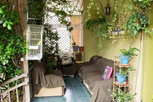 Hostal Residencia Blest Gana, Hostince  Viña del Mar - big - 11