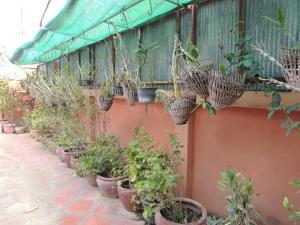 Malis Rout Guesthouse, Penzióny  Prey Veng - big - 30