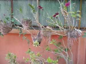 Malis Rout Guesthouse, Penzióny  Prey Veng - big - 34