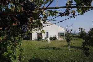 Holiday home Tsarevo
