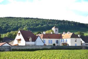Les Deux Chèvres, Hotely  Gevrey-Chambertin - big - 18