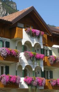 Alpotel Dolomiten - Hotel - Molveno / Pradel