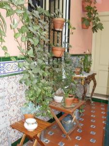El Riad Andaluz (13 of 29)