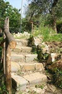 Gli Ulivi Agriturismo, Farmy  Sant'Agnello - big - 71