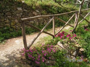 Gli Ulivi Agriturismo, Farmy  Sant'Agnello - big - 73