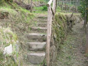Gli Ulivi Agriturismo, Agriturismi  Sant'Agnello - big - 65