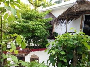 Maafushi View