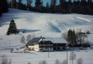 Ferienhof Kammerer - Ibach