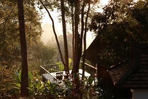 Vanilla hill (hill lodge) - Ban Wang Pha Pun