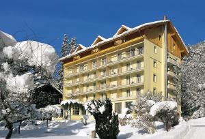 Wengen Hotels