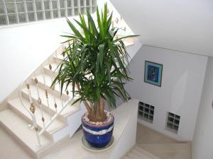 Adriatic Apartment Neum, Апартаменты  Неум - big - 12