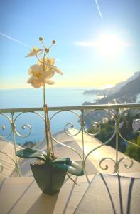 Les Deux Frères, Hotels  Roquebrune-Cap-Martin - big - 7