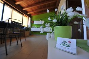 Auberges de jeunesse - B&B Villa Antonio
