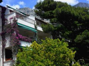 Apartments Staničić, Apartments  Brela - big - 137