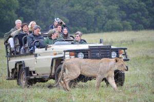 Lalibela Game Reserve (29 of 184)