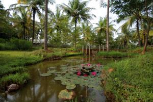 Shreyas Yoga Retreat (11 of 25)