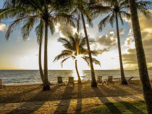 Marlin Waters Beachfront Apartments, Aparthotels  Palm Cove - big - 19