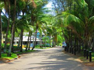 Marlin Waters Beachfront Apartments, Aparthotels  Palm Cove - big - 65