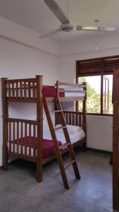 Bed in 4-Bed Mixed Dormitory Room Hitchhike Backpackers