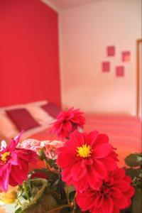 Camere Linda - AbcAlberghi.com