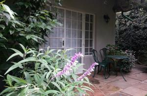 Rosebank Lodge Guest House, Pensionen  Johannesburg - big - 85